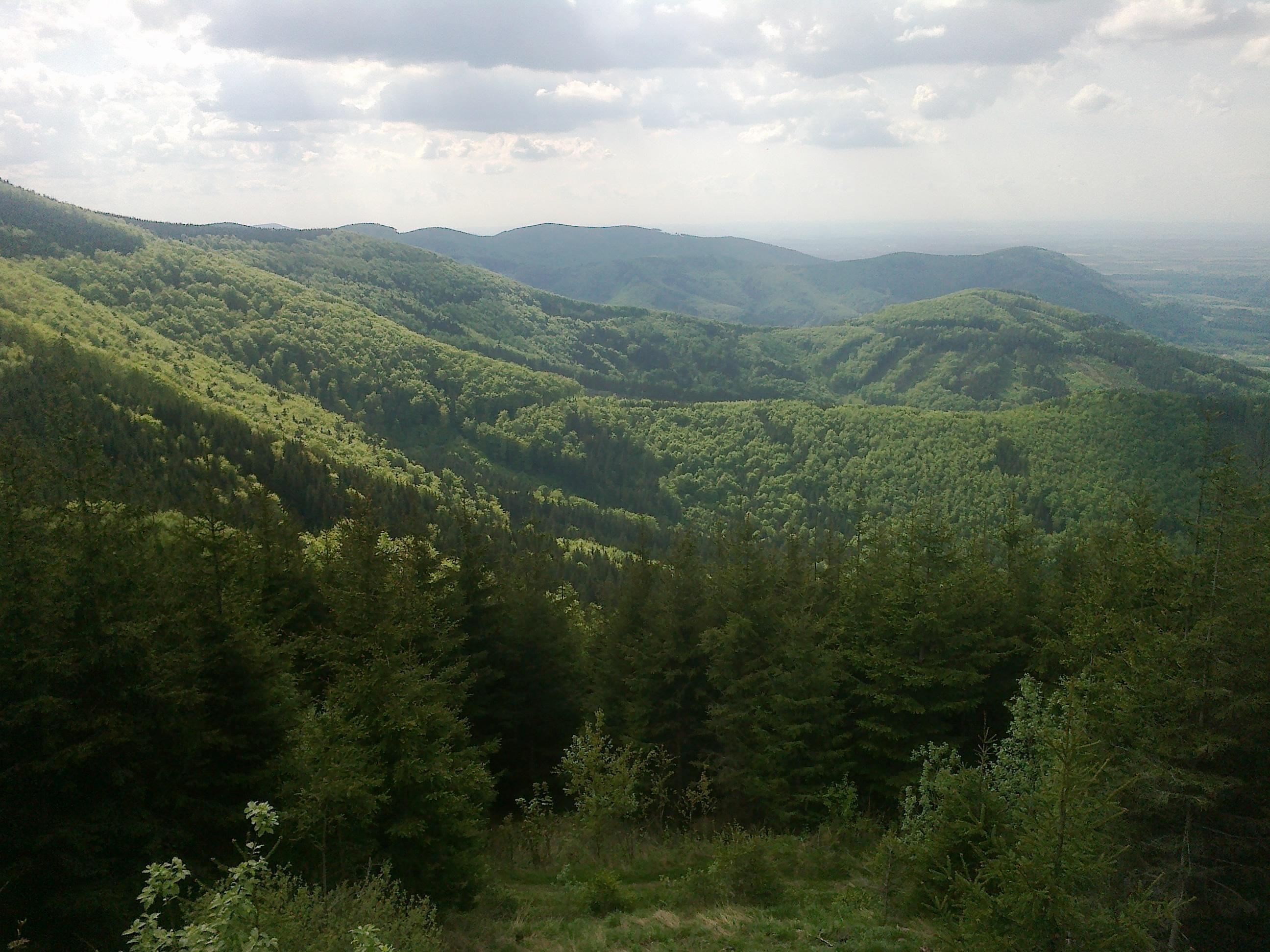 Pohled z Javorového vrchu
